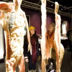 Human Body Exhibtion