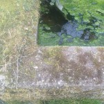 Wordless Wednesday – Old Stone Water Trough