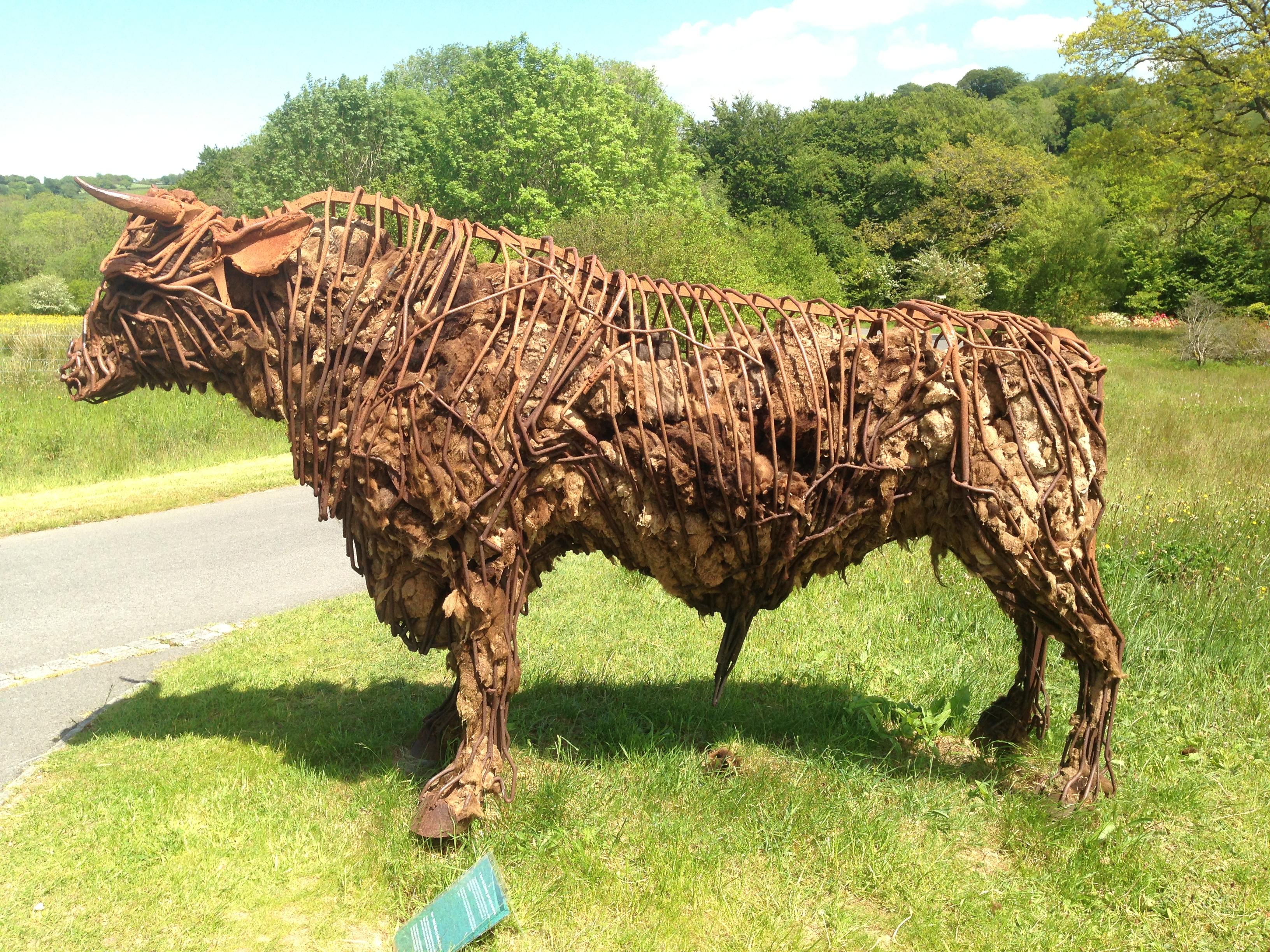 Wales Bull