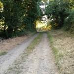 Derelict Cottage For Sale Garrendenny Lane
