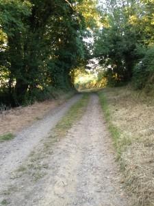 Garrendenny Lane