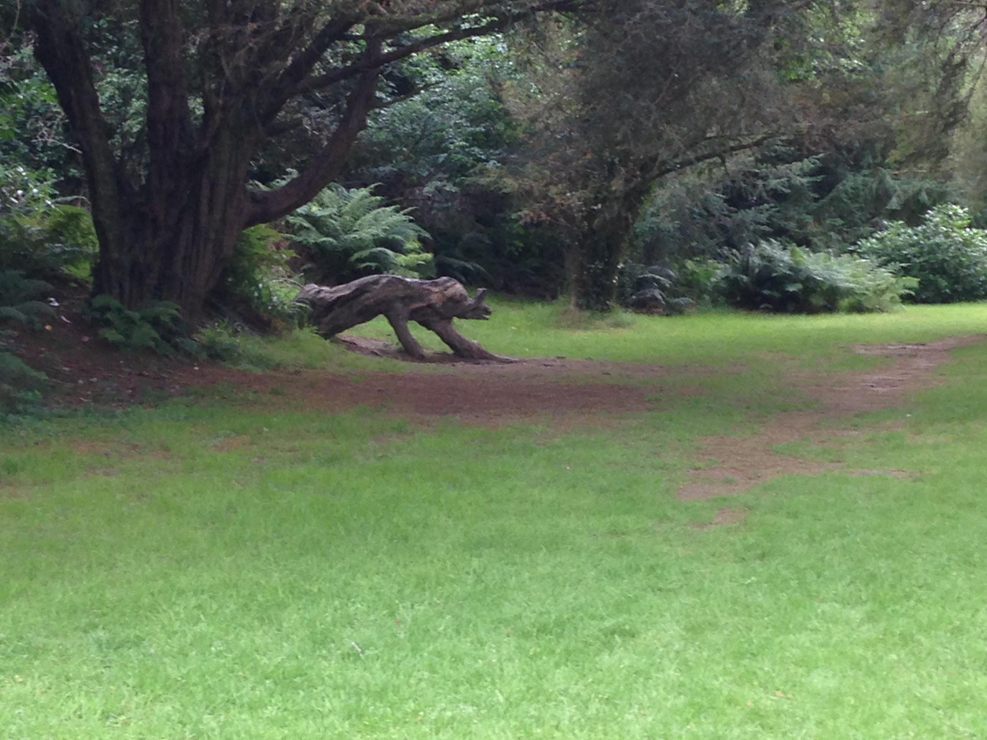 Wicklow Arboretum Gardens