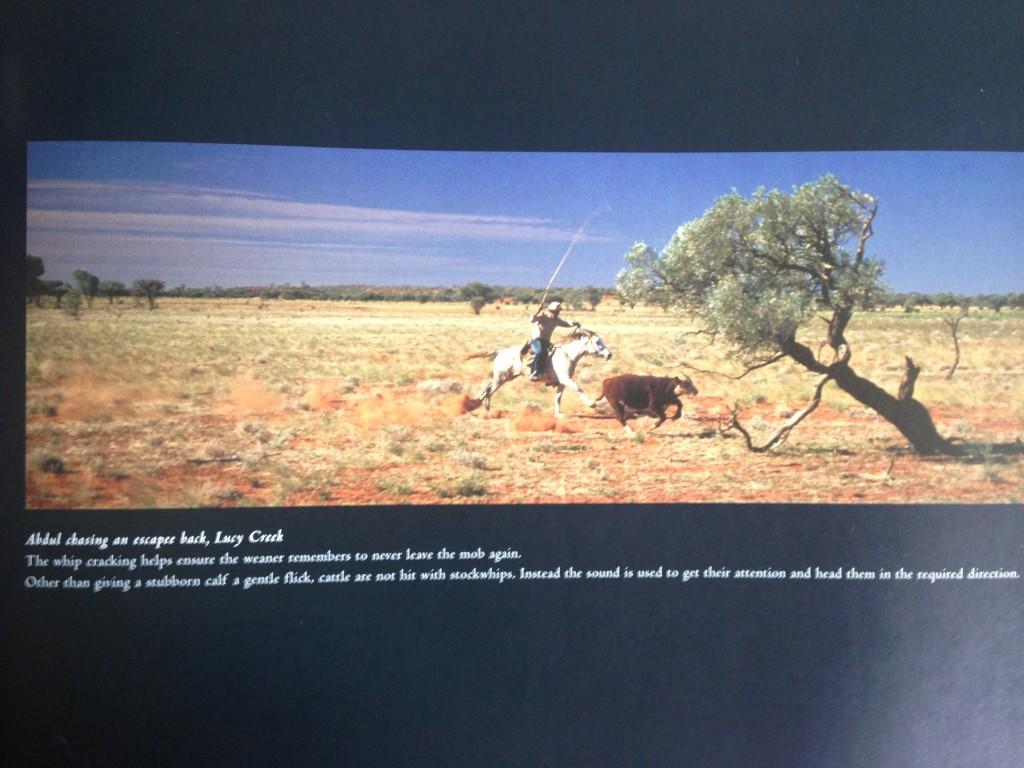 Life as an Australian Horseman