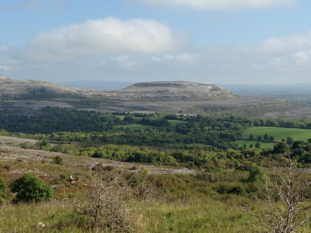 The Burren - spot the re-seeded fields down in the valley