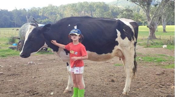 Australian Dairy Farming