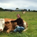 Interview with Organic Beef Farmer Maria Phelan