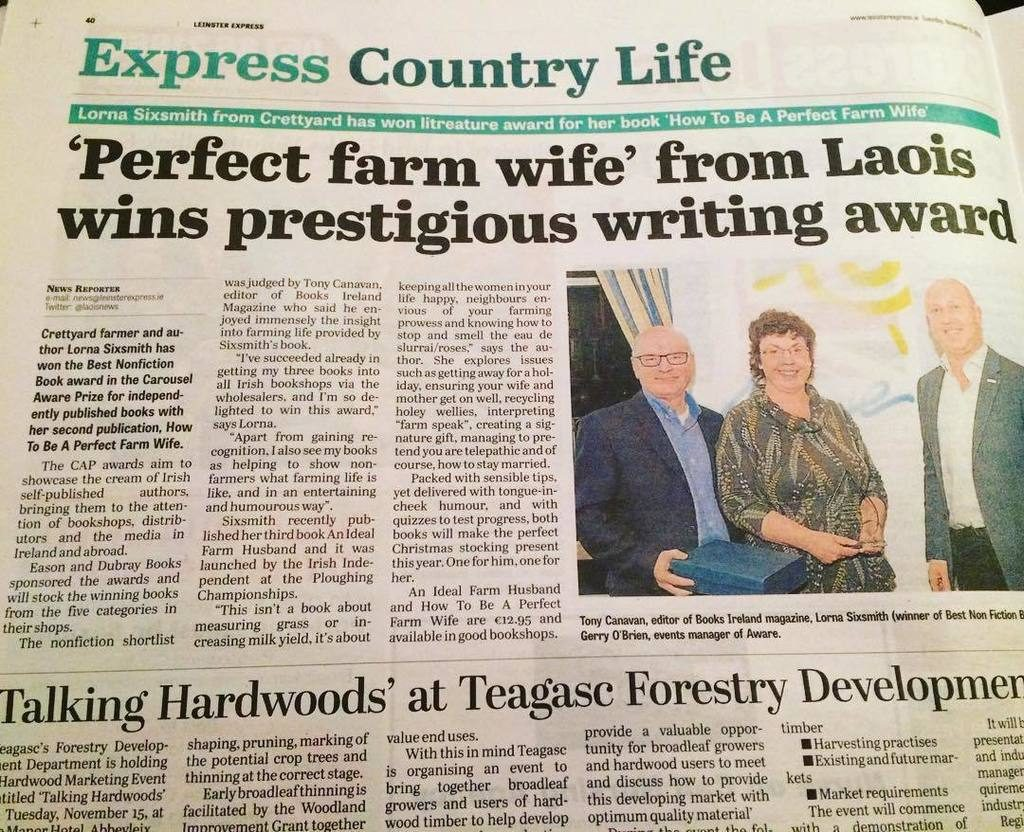 Perfect Farm Wife wins Indie Writing Award