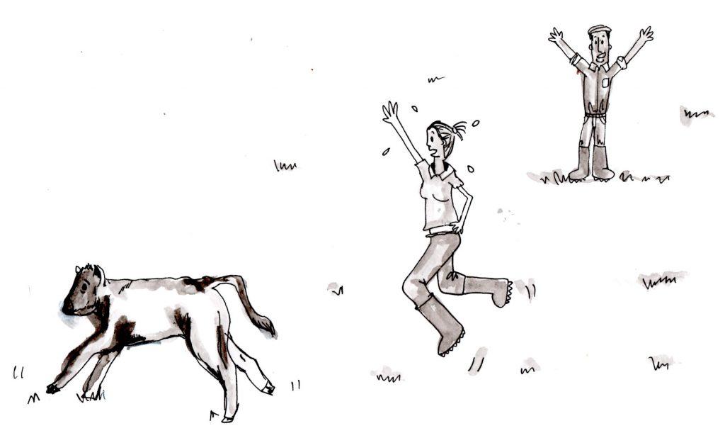 3(e) running calf