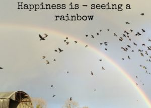Happiness is seeing a rainbow