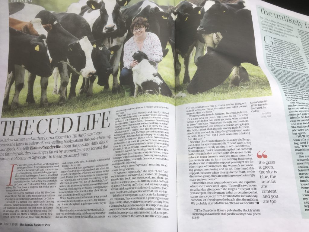 The Sunday Business Post feature - Lorna Sixsmith, Till the Cows Come Home