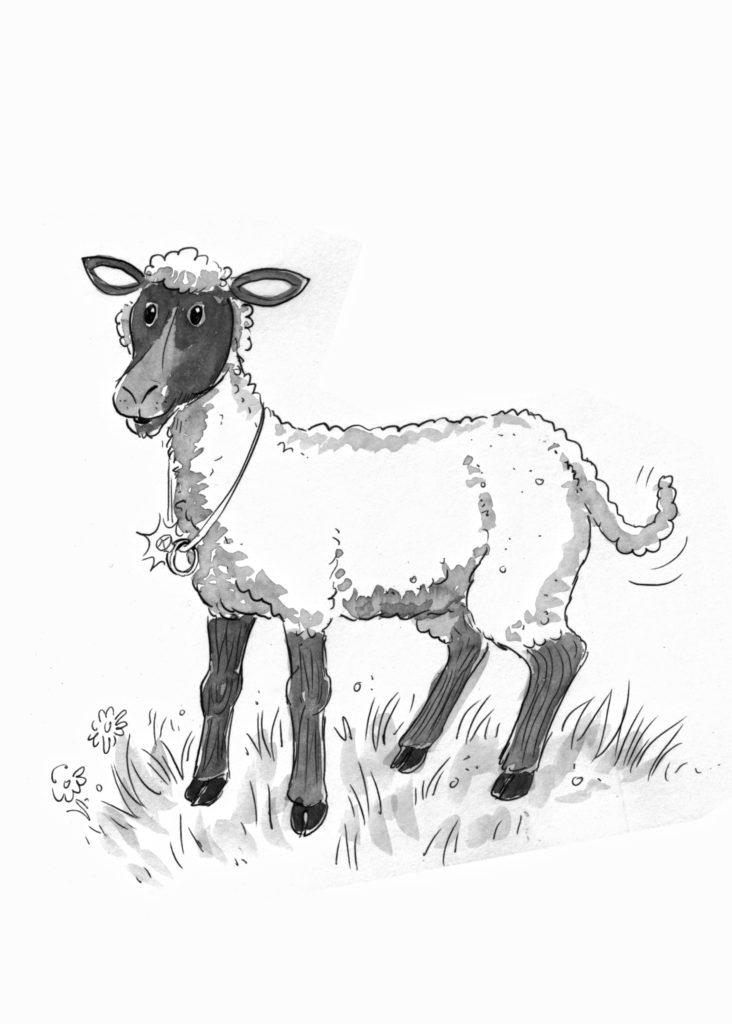 4 - Lamb