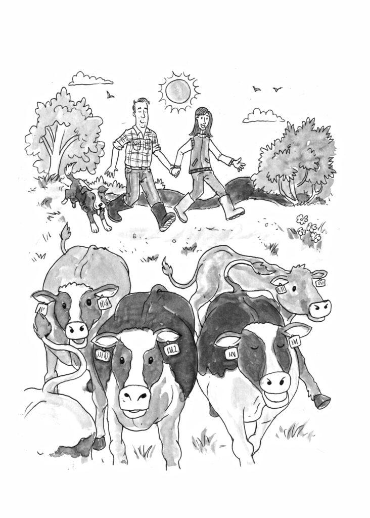 5 - Bringing in cows